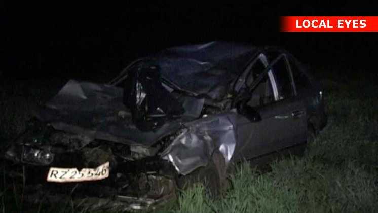 Bilen blev knust under de tunge dyr